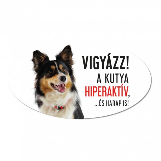 Vigyázz a kutya harap tábla műanyagból BORDER COLLIE