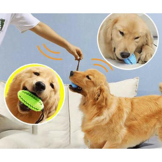 Fogtisztító kutyajáték világoskék