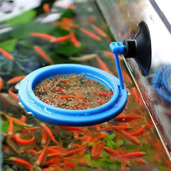 Akváriumi etető gyűrű Kék