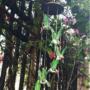 Kép 4/4 - Kolibris világító szélcsengő