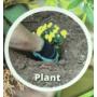 Kép 5/8 - Kesztyű kertészkedéshez ásókarmokkal