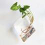 Kép 1/8 - Falra akasztható rombuszváza - asztali rombuszváza