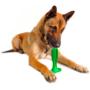 Kép 2/8 - Kutya fogkefe játék - Tiszta kutya, tiszta fogak