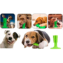 Kép 5/8 - Kutya fogkefe játék - Tiszta kutya, tiszta fogak