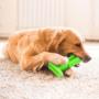 Kép 6/8 - Kutya fogkefe játék - Tiszta kutya, tiszta fogak