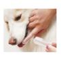 Kép 1/5 - Kutya fogkefe - 4 darabos csomag