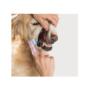 Kép 2/5 - Kutya fogkefe - 4 darabos csomag