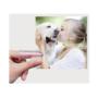 Kép 3/5 - Kutya fogkefe - 4 darabos csomag