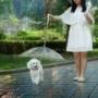 Kép 1/8 - Kutya esernyő pórázzal